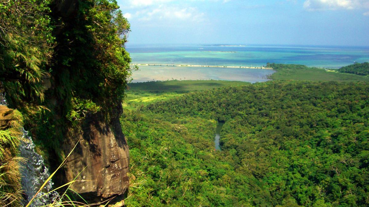 Ecotourism: Jungle of Iriomote (Okinawa prefecture, Japan).